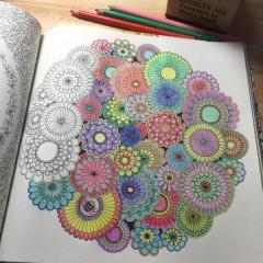 大人の塗り絵に使う色鉛筆はどれがおすすめ人気セットなどまとめました