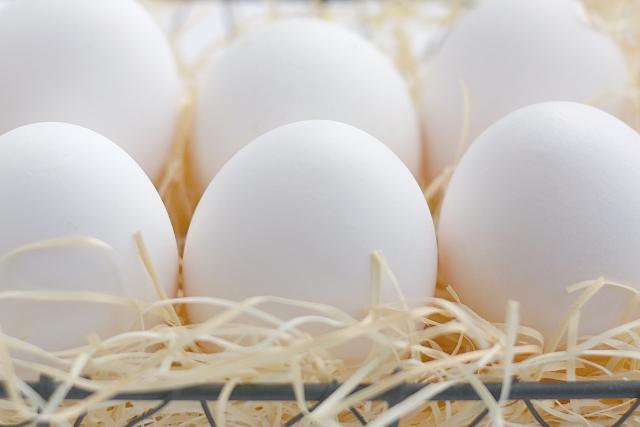 卵 食べ 過ぎ